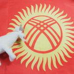 新型コロナウイルスで一変した生活!キルギス共和国ママの帰国まで