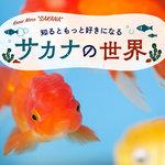 【第4回】子どもと一緒に育ててみよう!初めての「金魚」の飼い方