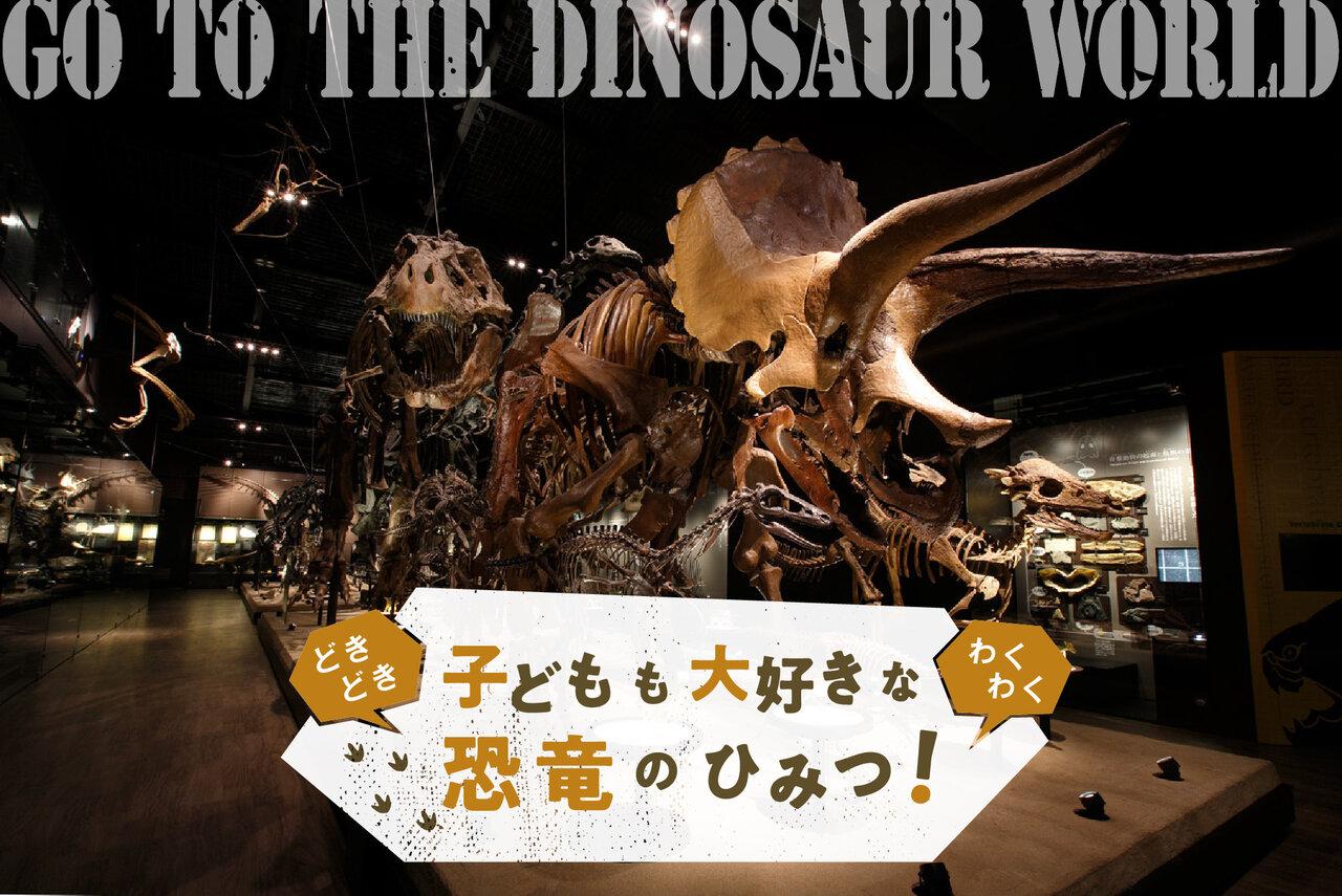 【第2回】恐竜・化石ってどう見たらいい?親子で博物館を楽しむポイント