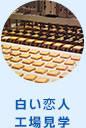 【公式】白い恋人パーク | お菓子の魅力がいっぱいのテーマパーク