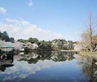 埼玉県大宮公園