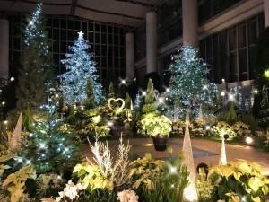 奇跡の星の植物館 クリスマスフラワーショー2018 北欧のクリスマス