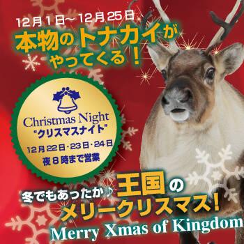 12月1日~12月25日 本物のトナカイがやってくる!「王国のメリークリスマス ~Merry Xmas of Kingdom~」 | 神戸どうぶつ王国