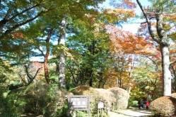 蓬莱園|観光施設|神奈川観光情報サイト「観光かながわNow」