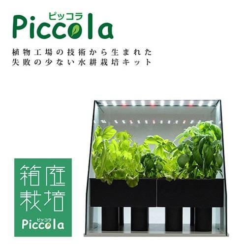 Amazon|ASPLITY 水耕栽培キット「ピッコラ」