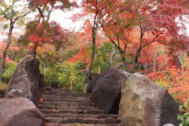 筑波山 – 観光いばらき(茨城県の観光情報ポータルサイト)