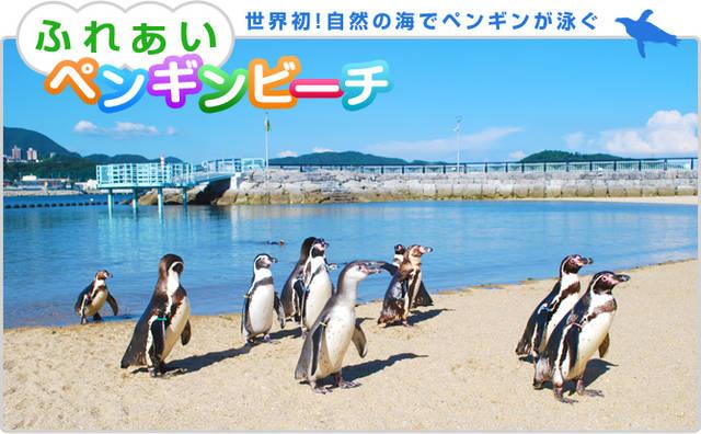 長崎ペンギン水族館 | 長崎市にある水族館です。