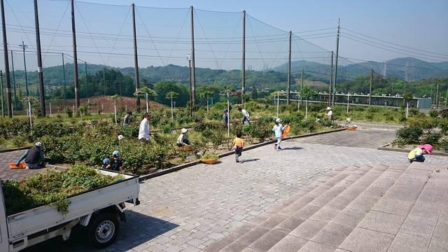 ホーム - 蜂ヶ峯総合公園公式サイト