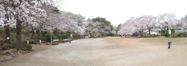 大田区ホームページ:多摩川台公園