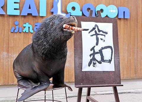 海と島と生きもののテーマパーク | 横浜・八景島シーパラダイス - YOKOHAMA HAKKEIJIMA SEA PARADISE