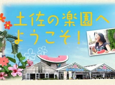 高知「花と果物の楽園」|西島園芸団地