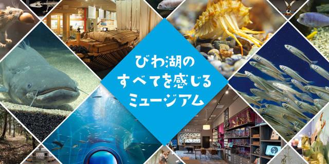 滋賀県立琵琶湖博物館 | びわ博(びわはく)は、湖にのぞむ、日本有数の総合博物館です。国内最大級の淡水の生き物の水族展示、また琵琶湖の地学・歴史・環境についての展示があります。
