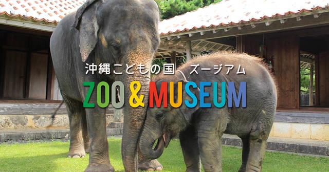 沖縄こどもの国 - Okinawa Zoo & Museum