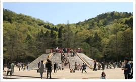 宝が池公園 子どもの楽園 | 京都市都市緑化協会