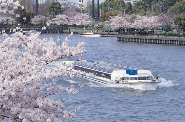 毛馬桜之宮公園 | OSAKA-INFO