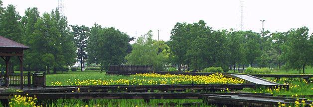 舎人公園 公園へ行こう!
