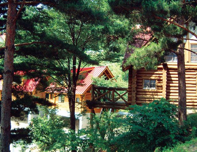 塩塚高原キャンプ場|徳島県三好市の塩塚峰に広がるキャンプ場