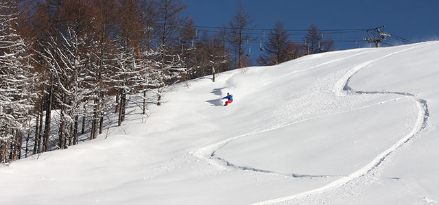会津高原たかつえスキー場 – 全エリアふわっふわのパウダースノー