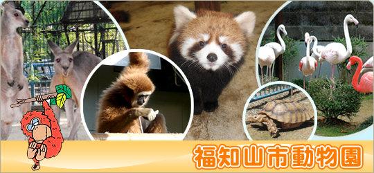 動物園|三段池公園へようこそ!(公財)福知山市都市緑化協会