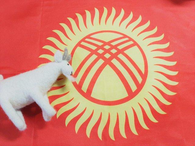 新型コロナウイルスで一変した生活!キルギス共和国ママの帰国まで - teniteo[テニテオ]