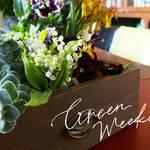 春の草花を上手に使ったお家にかざれるフラワーブーケ作り