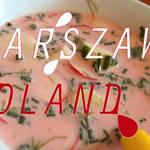 インパクト大!!ポーランドの家庭料理『ビーツとケフィアとレモンを使った冷製スープ』
