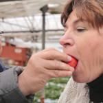 アメリカン人一家の新しい日本の楽しみ方【茨城県】vol.1 ドキドキな納豆から甘い苺までパクッ♪