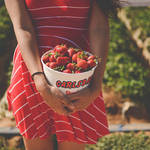 食べるとなんだか幸せな気分になるイチゴのこと