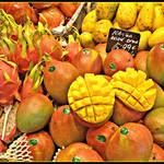 マンゴーを二度楽しむ! 食後の種まき紹介