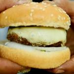 牛肉100%ハンバーグにとろ~りチーズをのせて。森で作る絶品ハンバーガー!!