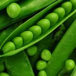 新鮮なグリーンピースがあったらコレ!気分ヨーロピアン♪グリーンピースの温サラダ