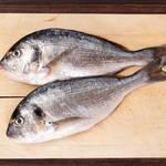 お刺身だけが料理じゃない。魚の王様、鯛の御料理