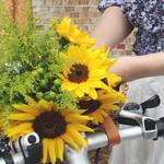 自転車のカゴをおしゃれなバスケットにかえて、ワクワクしちゃう移動時間にしよう!