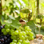 そろそろワインをはじめてみませんか? vol.13