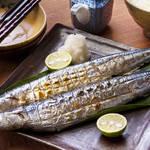 秋といえばサンマ!でも江戸時代は下品な魚だった?