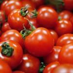 常備しておくと便利!セミドライトマトの作り方と保存法