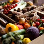 しっかり保存して新鮮長持ち!野菜の保存方法