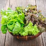 未来の野菜は宇宙から?国際宇宙ステーションで話題になった宇宙野菜とは