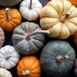 かぼちゃの調理が楽しくなる!美味しく手軽に料理を進める豆知識