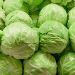野菜をもっとおいしく楽しみたい!意外と知らないキャベツのトリビア