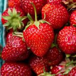 意外と知らないイチゴの秘密。一度で二度おいしい食べ方・甘いイチゴの選び方