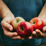 青森県庁直伝!特産品のリンゴとレシピごとに使い分けるべき品種とは?