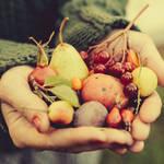 朝の果物は金?! 体に溜まった毒素をデトックスしてくれる「フルモニ」のススメ