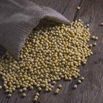 豆をそのまま使う大豆料理にチャレンジ!豆腐やおからに頼らない豆料理
