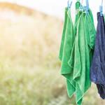 花粉から洗濯物を守る!取りこむときに払うだけじゃ足りない衣類の花粉対策