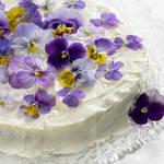 エディブルフラワーで春レシピを華やかに!食用花を種類ごとに使い分けるコツ
