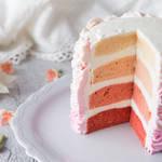 グラデーションが美しい♡フォトジェニックなオンブルケーキ