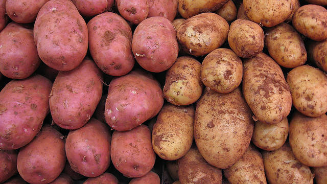Potatoes | Following the Spanish conquest of the Inca Empire… | Flickr - Photo Sharing! (4972)