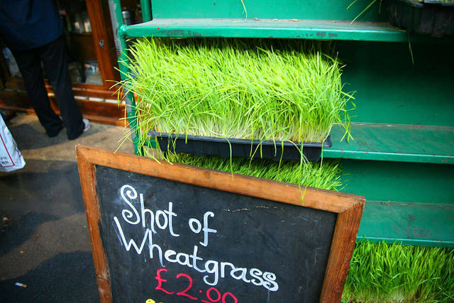 Borough Market Wheatgrass | Flickr - Photo Sharing! (6828)