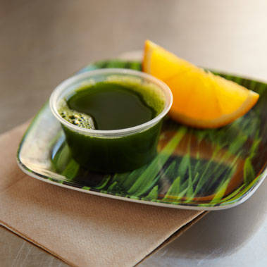 Wheatgrass Shot (6834)